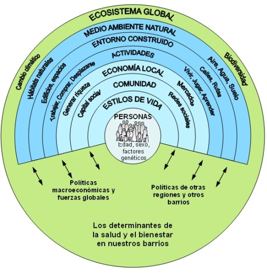 Local Human Habitat - Detalle de los determinantes sociales de la salud y el bienestar que actúan a nivel comunitario